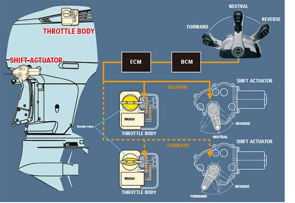 Diagram of Suzuki Precision Control (Electronic Throttle and Shift Systems)